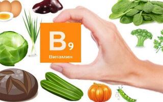 Последствия дефицита витамина BC (B9, фолиевой кислоты) в крови