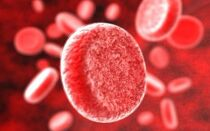 Таблица обозначения групп крови человека