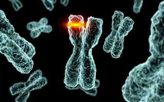 Что такое гемобластозы и какие методы их лечения существуют