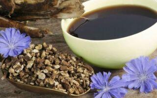 Почему нельзя пить цикорий и напитки с его составом при варикозе