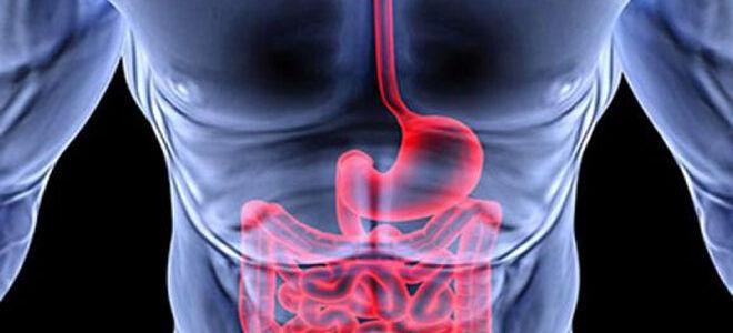 Причины появления пищеводного кровотечения и как его устранить