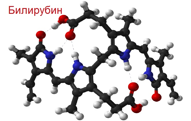 Молекулярная составляющая единица