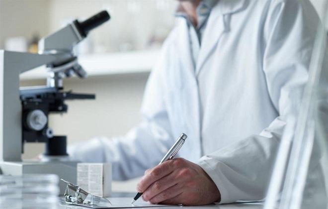 Микроскопичные результаты исследования крови
