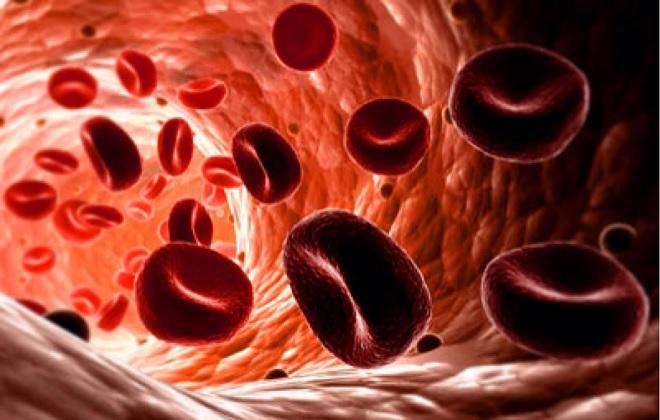 Венозная кровь с нормальным показателем составляющих
