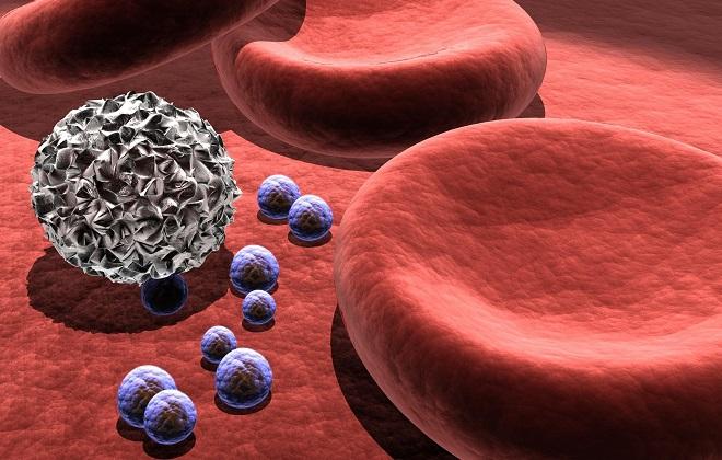 Разделение крови на содержащие элементы