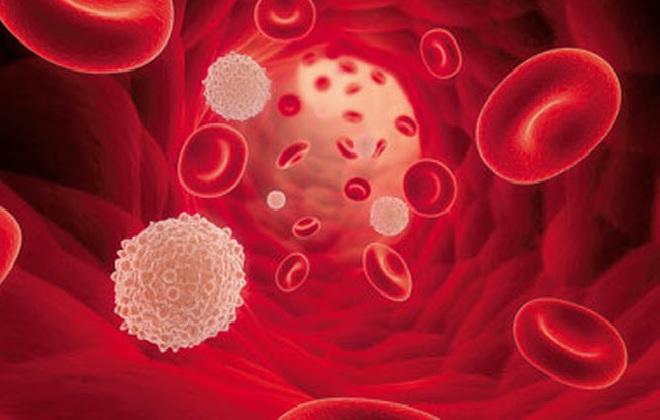 Содержание тромбоцитов в крови мужского населения планеты