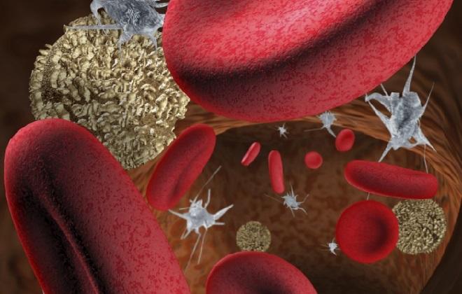 Высокий показатель содержания тромбоцитов в анализе крови