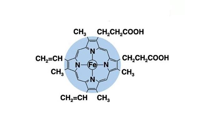 Химическая составляющая молекулы в крови