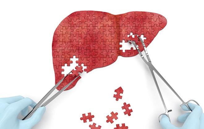 Вирусные заболевания влияющие на печень и иммунитет человека