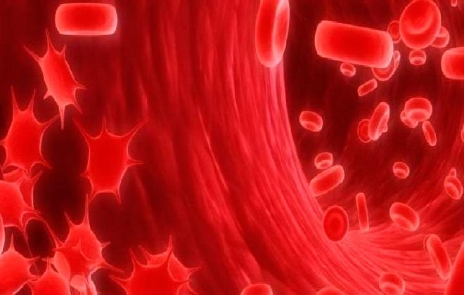 Показатели крови по которым можно заподозрить рак