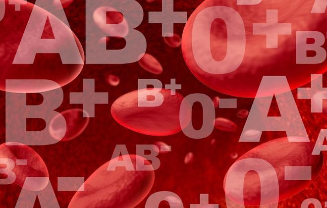 Степень влияния резуса крови на потомство
