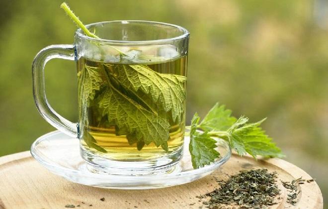 Чай из крапивы для чистки сосудов