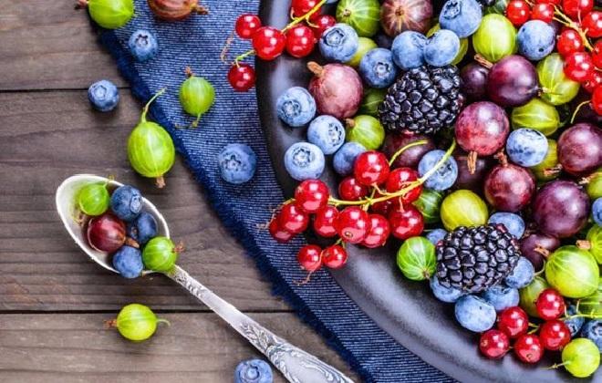 Много-витаминный комплекс лессовых ягод
