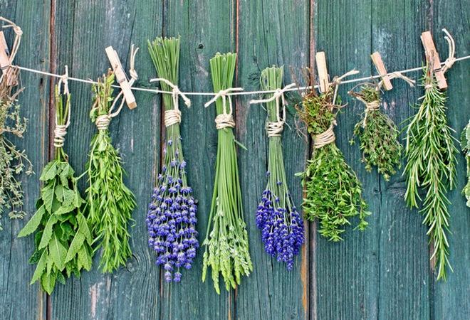 Травы при маточном кровотечении — Твой гинеколог