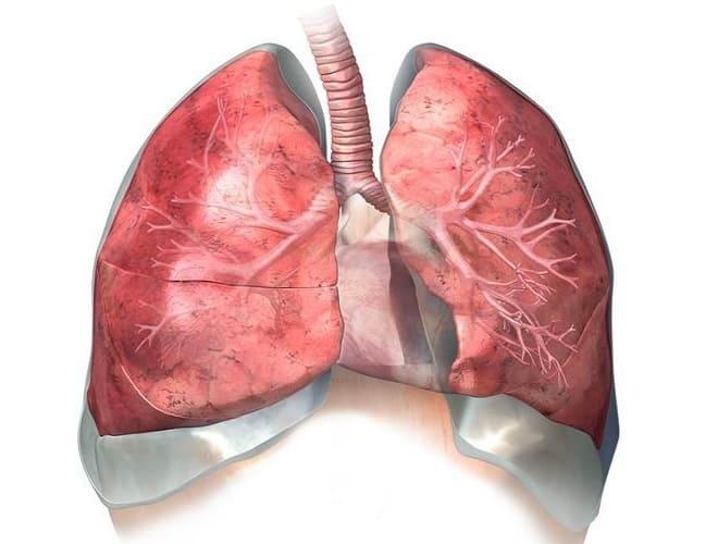Аортосклероз легких: что это такое, как лечить, симптомы