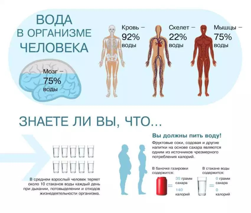 Баланс воды в организме