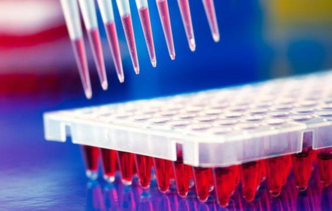 Анализ на иммунофкрменты