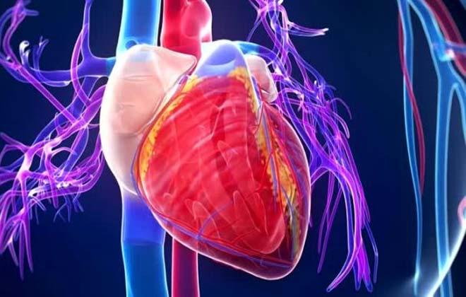 Аневризма левого желудочка в сердце