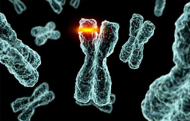 Генные мутации
